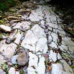 Trockener Fluss