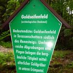 """""""Bingen"""" der Goldwäscher bei Selsendorf"""