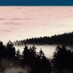 Inversion - Franken im Nebelmeer