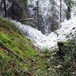 Landwehrgraben mit Wall am Heckenbühl