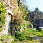 Gite de liou - Cévennes - Le mas et la bergerie