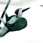 2ª edizione ◊ Festival Brocante - illustrazioni Sara Colautti