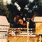 Dynastie (Doncaster x Celadon xx) international bis S**** erfolgreich und 2 x Teilnahme an Europameisterschaften der Jungen Reiter