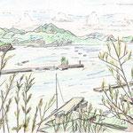 父島赤灯台を電信山から臨む(2008/8, pen+colored pencil)