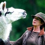 Lama Sancho, auch aus dem Zirkus gerettet, ist etwas ganz besonderes - dank ihm hat Maria den Namen: die Lamafrau! Dazu gibt es auch das Buch