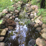Der Bachlauf im Garten zum Teich