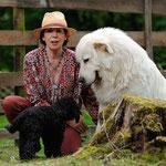 Es ist immer wieder beglückend wie gut sich alle Tiere auch die Hunde auf dem Hof verstehen. Wie hier Carlo und die kleine Chiquita