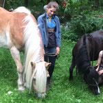 Die zauberhaften Zwillinge Linde und Imme lassen unsere Rentnerpferde Suleik und Momo im Garten grasen