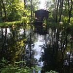Der Teich vom Haus aus gesehen