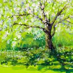 Cherry tree 16 x 24