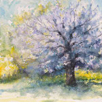 Cherry tree 1 36x48 available