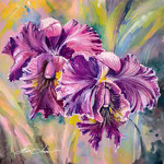 Orchid 20 x 20