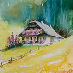 Alpine cottage 30x40 Available