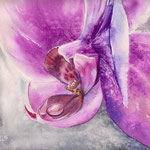 Orchid 30x40 available
