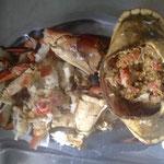 Buey de Mar, das Innere vom Krustentier wird mit Weisswein und Brot angerichtet
