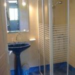 De badkamer met douche, wastafel en wc.
