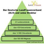 Aufbau Deutscher LandFrauenverband