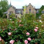 Schloss Ippenburg (Foto: Ellen Becker)