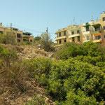 Habitat van kameleon en parelskink.