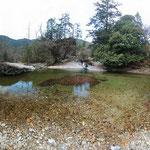 Japanese Giant Salamander habitat. © Laura Tiemann