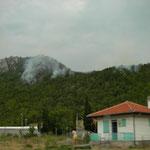 Bosbrandjes onderweg