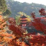 Kiyomizu-dera pagoda © Laura Tiemann