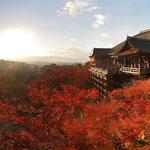 Kiyomizu-dera © Laura Tiemann
