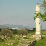 Ireon is bekend om de grote tempel die hier ooit stond, deze tempel was gewijd aan Hera aan word ook wel het Heraion genoemd.