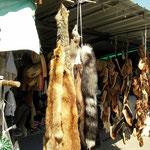 Dat er nog veel gejaagd wordt in Macedonië wordt duidelijk op de markt van Ohrid.