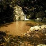 Sardijnse beeksalamander habitat