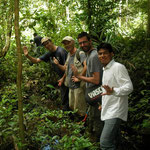 Jolly group in the jungle