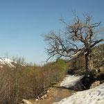 Still winter on top of the mountain.