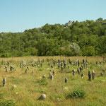 Veel oude kerkhoven op weg naar het meer.