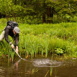 Catching newts. © Tomáš Klacek