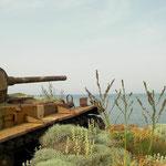 Op een strand in het noorden van het eiland stond deze tank weg te roesten.