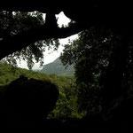 Blik vanuit grottensalamanderhabitat.