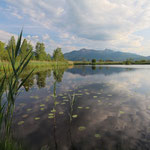 The Höllsee provided a second beautiful swim location. © Laura Tiemann