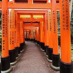 Fushimi Inari © Laura Tiemann