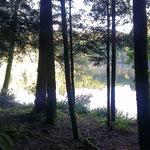 Wilde Wälder mit traumhaften Seen