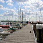 port at Breege