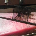 On vide la cuve qui contient les grains de raisins