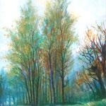 Paesaggio, 35 x48 - 1955