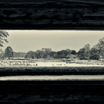De Wittsee Winter 2010