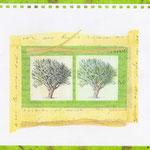 les arbres (24,5 x 22 cm)