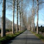Vlotweg
