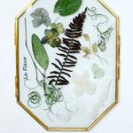 2020年5月 オンラインレッスン & 長野 飯田 1dayレッスン『植物のインテリアフレーム』作り