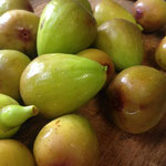 イチジクのドライフルーツ作り