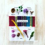 2018年8月 飯田 親子ワークショップ 『植物標本』作り