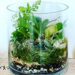 2020年10月 オンラインレッスン & 長野 飯田 1dayレッスン『植物とコケのテラリウム』作り