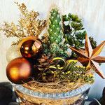 2018年11月 表参道&飯田1dayレッスン 『サボテンを使ったクリスマステラリウム』作り
